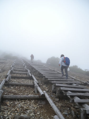 120708_三国山お花畑~山頂の階段.jpg