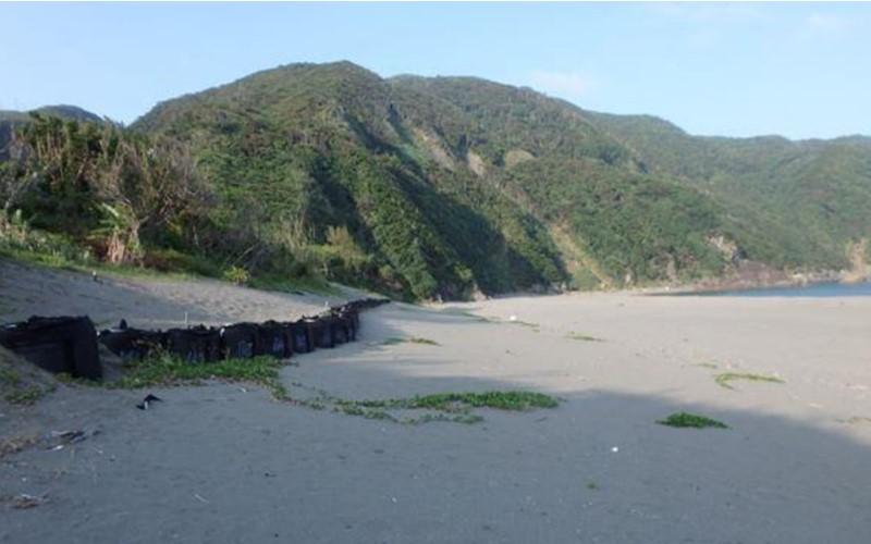 嘉徳の砂浜