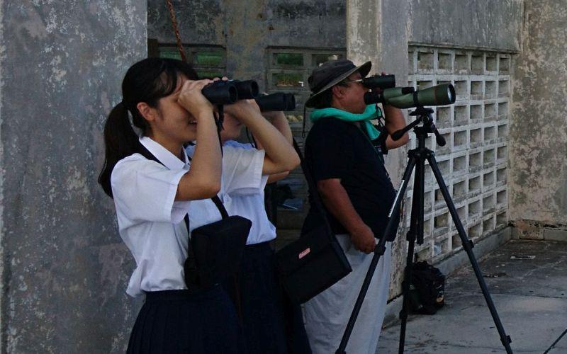 宮古島で飛来数を調査する関係者(写真)