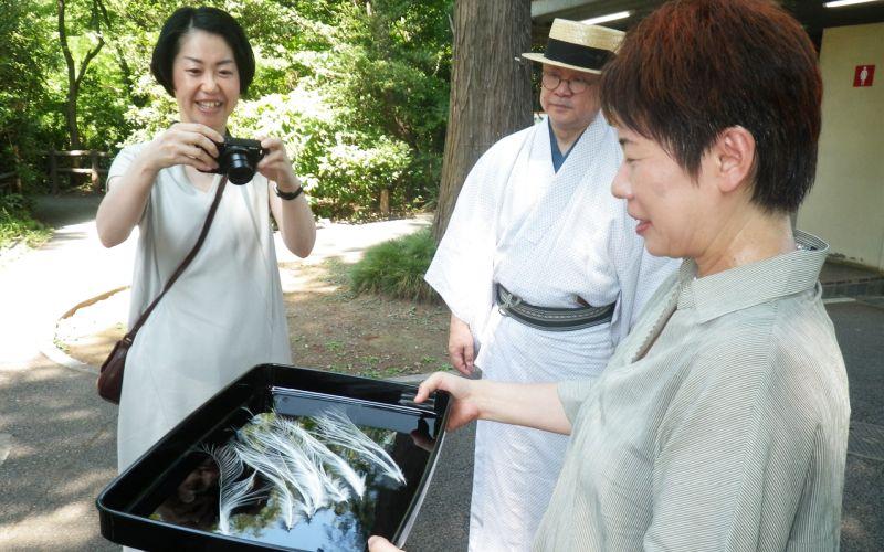 鷺の羽を撮影する、伝統芸能の道具ラボの田村民子さん