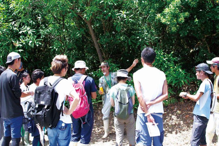 自然観察指導員講習会(写真)