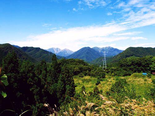 赤谷の森(写真)