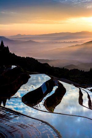 岳の棚田の写真