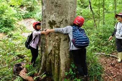 写真:ブナの森の自然観察2