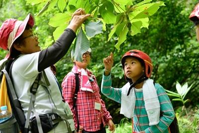写真:ブナの森の自然観察3