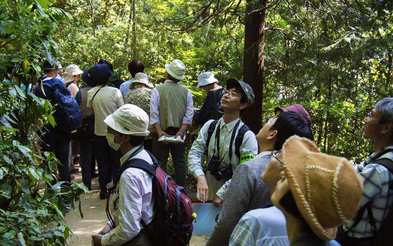 参加者と一緒に斜面林に生える樹木を観察