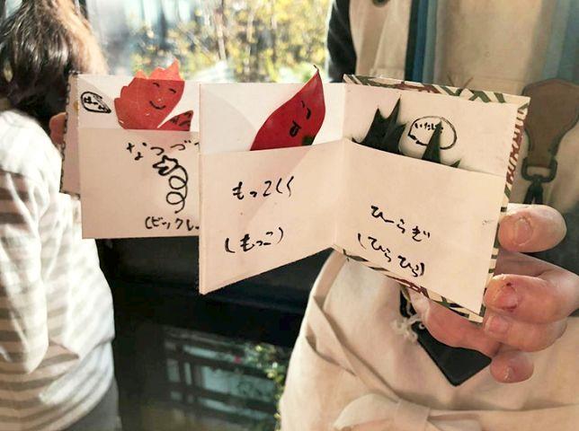顔を描いた葉っぱとコメントを書き入れて完成した図鑑の写真