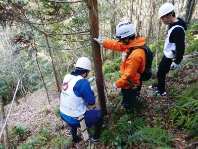 白いヘルメットを被って間伐作業をしている様子の写真