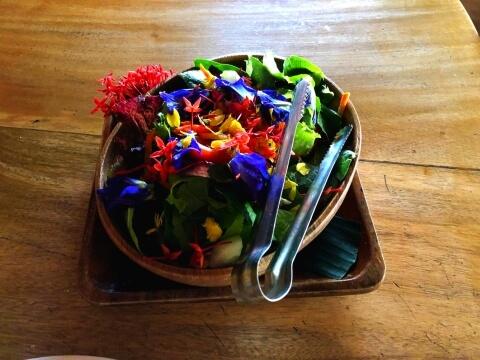 赤、青、黄色の鮮やかな色の花が盛られたサラダの写真