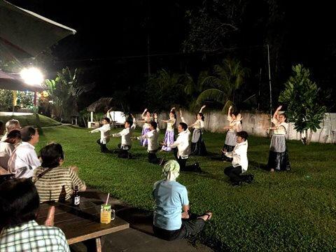 夜、ライトアップされた庭でダンスを鑑賞する参加者の写真