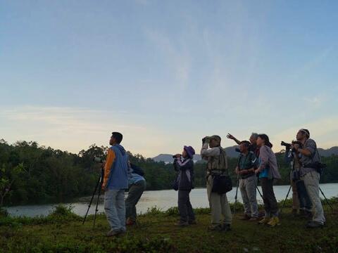 朝方、カメラや望遠鏡を手に、目を凝らす参加者写真