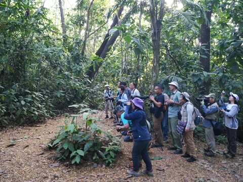 ジャングルの中でカメラや望遠鏡を構える参加者の一団写真