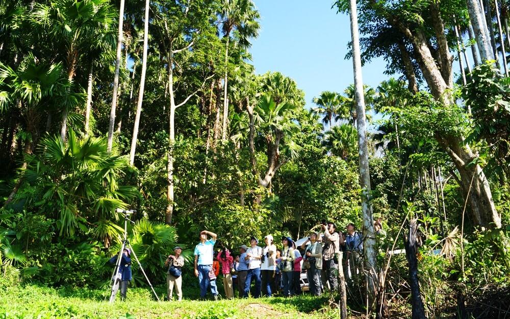 ジャングルで空を見上げて観察する参加者(写真)