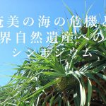 「奄美の海の危機と世界自然遺産への道」シンポジウム