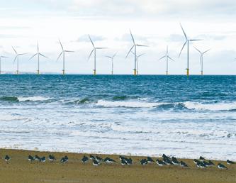 【配布資料】今日から始める自然観察「ぷらぷら漂う 海辺のプラスチック」