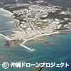 【自然しらべ2007】セミTOP