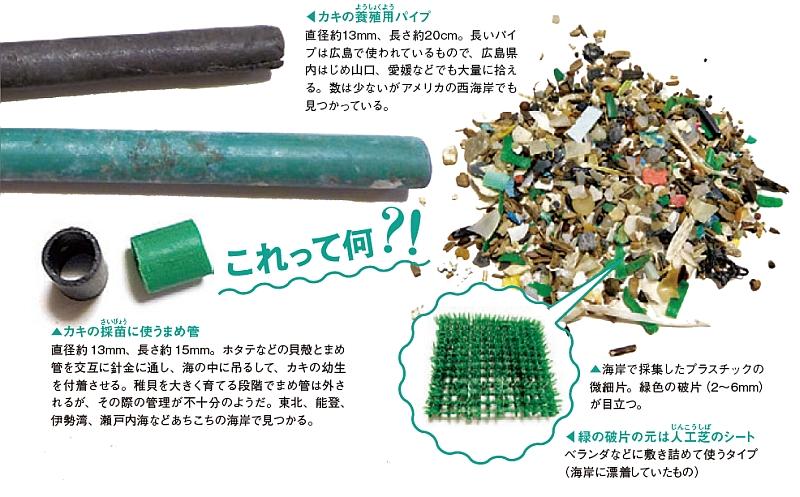 カキ養殖用のパイプ、海岸で採取したプラスチックの微細方などの写真