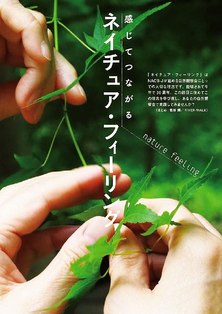特集ページ扉、葉っぱを触る手の写真