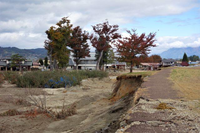 崩落した道路と樹木の写真