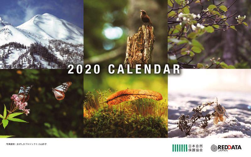 カレンダー表紙の写真