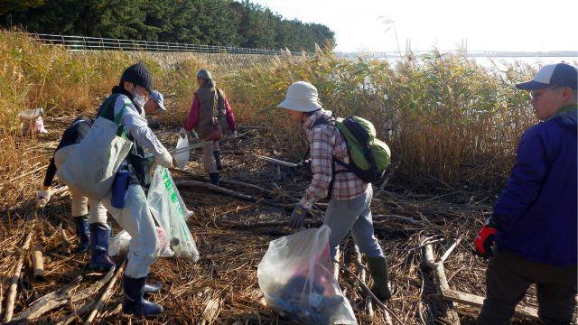 ゴミ拾いをする参加者の写真