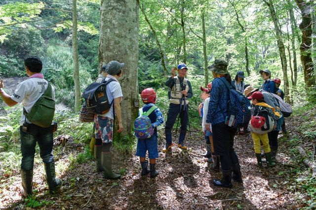 自然観察指導員の解説を聞く参加者の写真