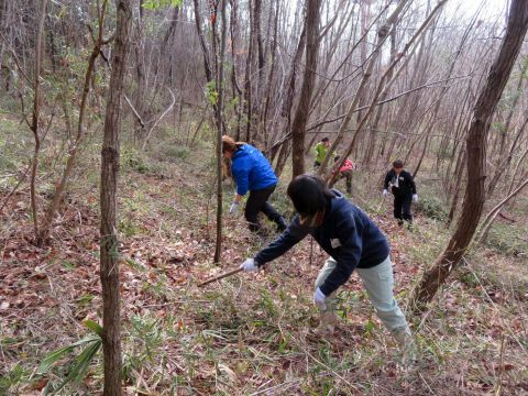 山の斜面の草刈りをする参加者