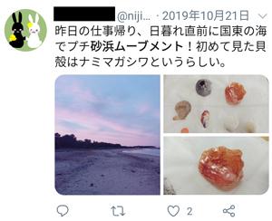 昨日の仕事帰り、日暮れ直前に国東の海で砂浜ムーブメント!初めて見た貝殻はナミマガシワというらしい。ツイート画面