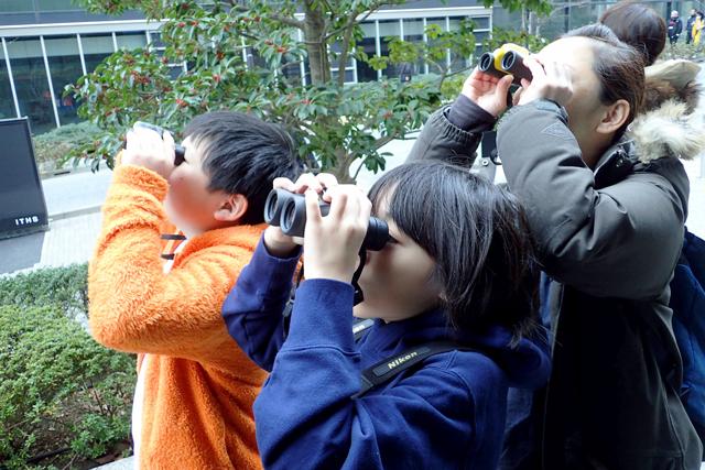 屋外で双眼鏡を覗く参加者の写真