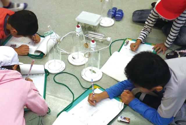 昆虫観察ボトルを真ん中に置いてスケッチをしている子供たちの写真