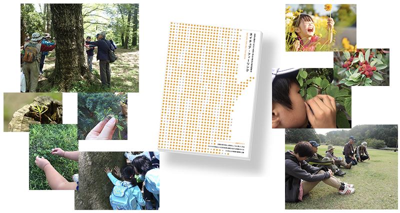 自然と人が触れ合う写真