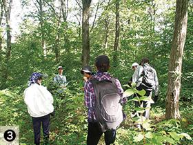 森の中で立ち止まっている指導員の写真