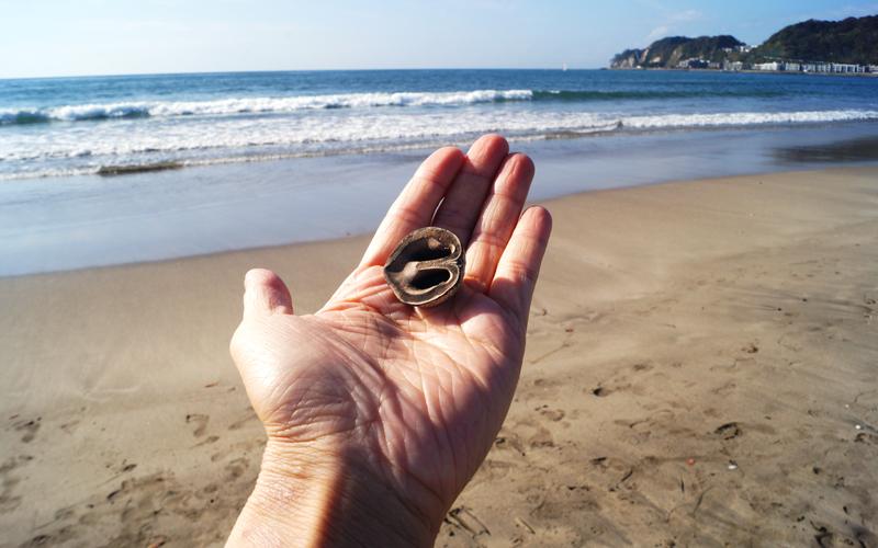 掌に貝を載せている写真