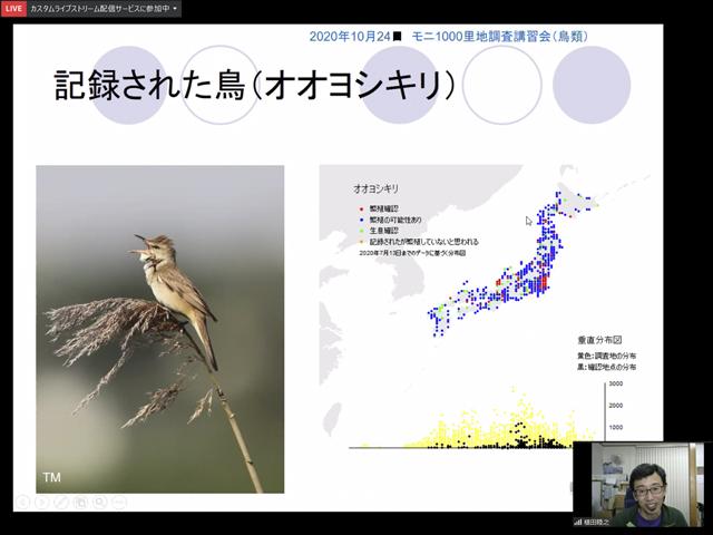 鳥類調査オンライン講習会の様子