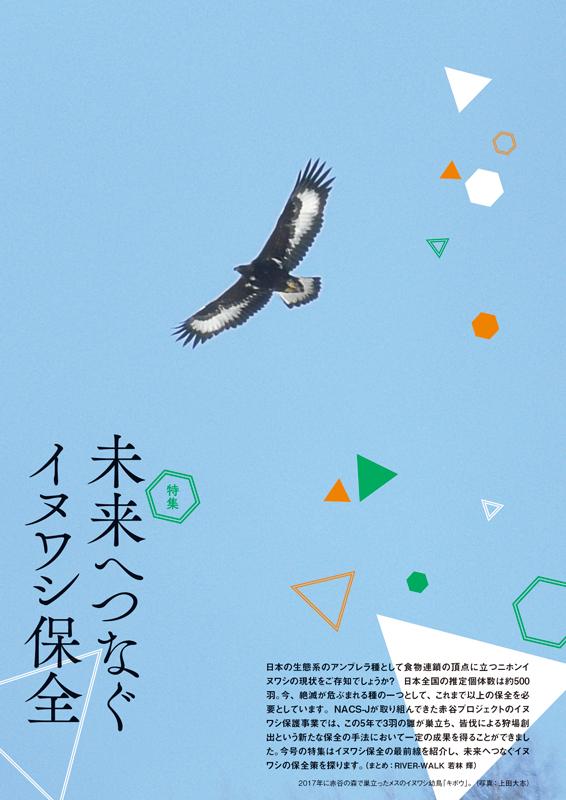 特集『未来へつなぐイヌワシ保全』ページの画像