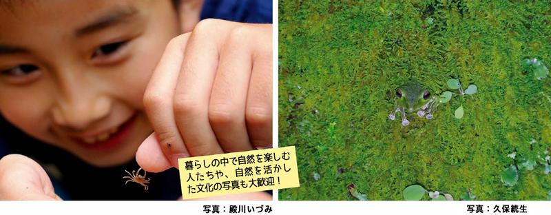 会報表紙フォトコンテスト昨年の作品より(画像)