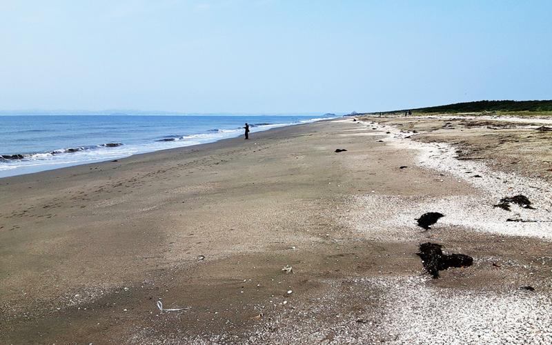 砂浜の風景写真