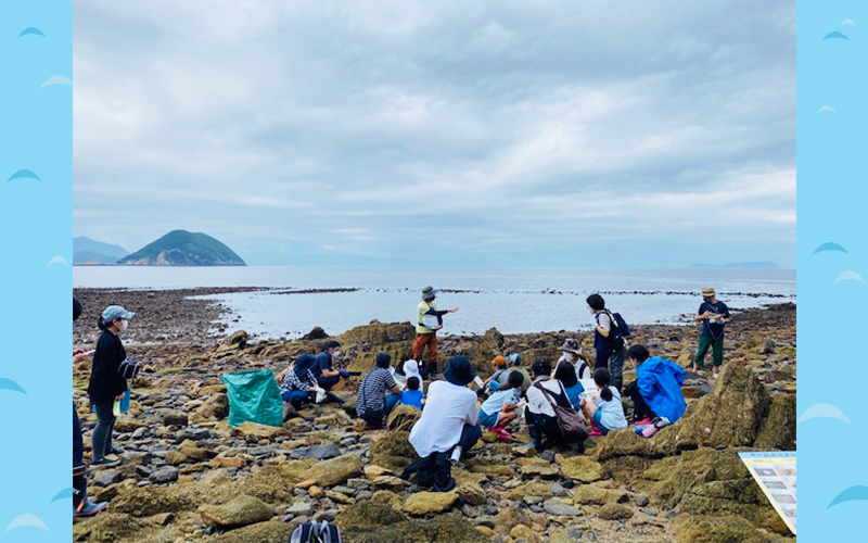 海岸で授業しているみどりの学校の写真風景