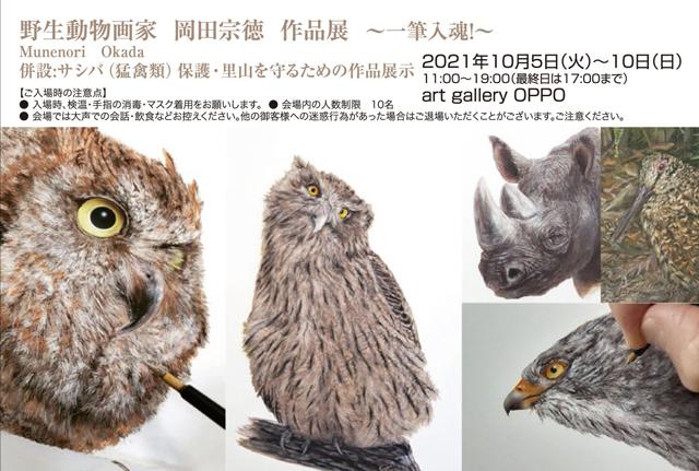 フクロウなどの絵が描かれたイベント案内の画像